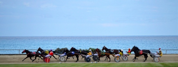 burnie tasmania australian harness racing